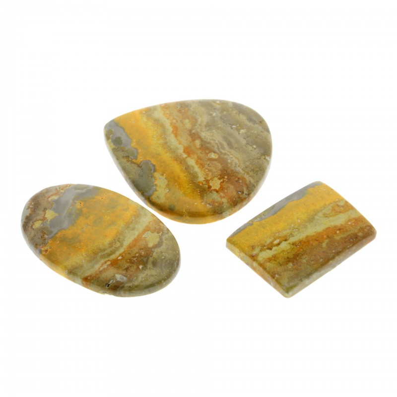 Cabochon Jasp Bumble Bee 29-43 x 22-40 x 5-6 mm