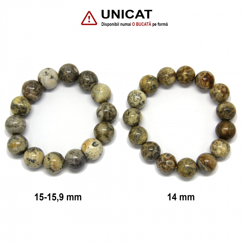 Bratara Coral Fosil Diametru 62 din Margele Rotunde - 14-15,9 mm