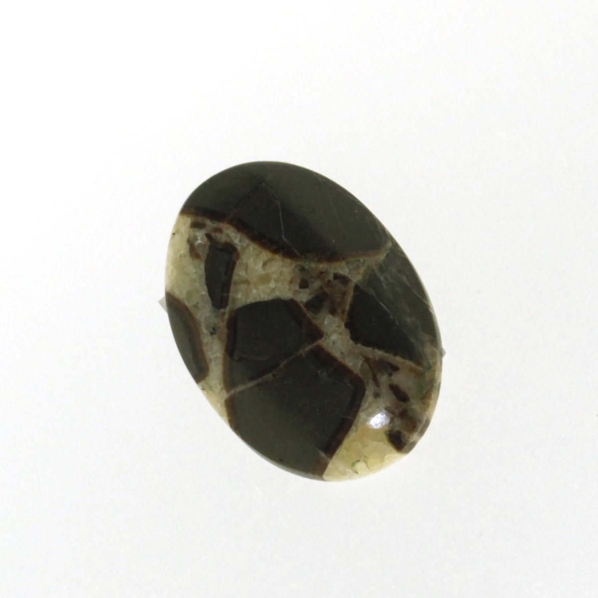 Cabochon Septarian maron oval 31 x 0.4 mm